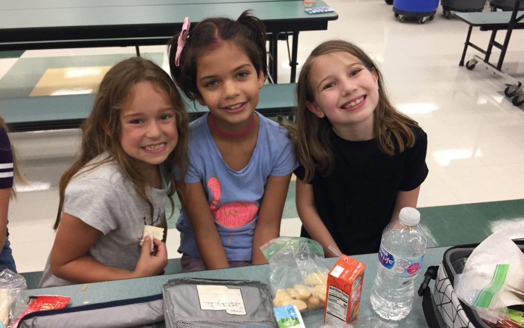 TOES School Lunch Program